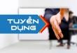 Top 5 kênh tuyển dụng việc làm uy tín nhất Việt Nam